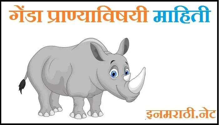 rhinoceros animal information in marathi