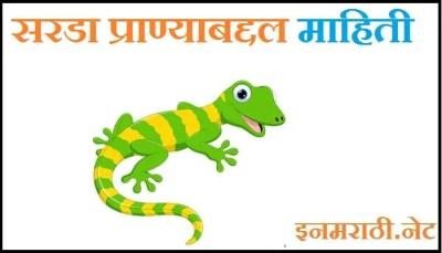 sarda animal information in marathi