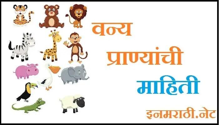 wild animals information in marathi