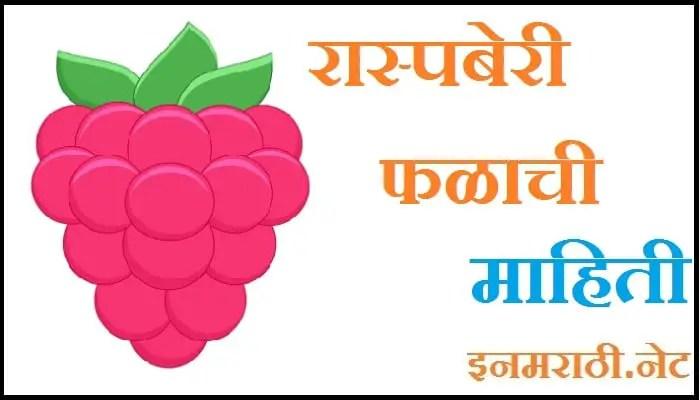 raspberry fruit information in marathi