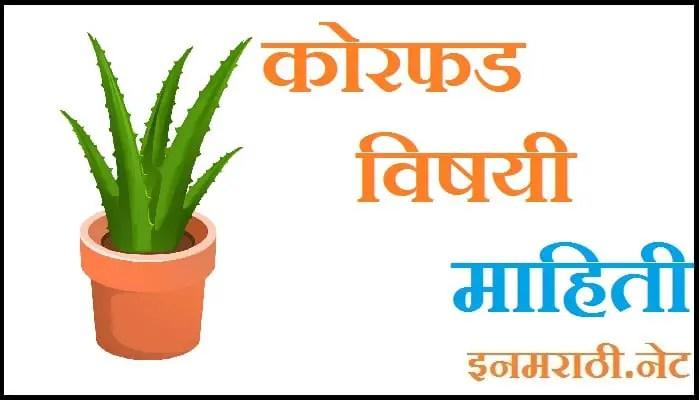 aloe vera information in marathi