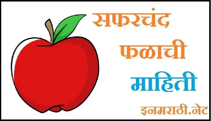 apple information in marathi