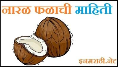 coconut information in marathi