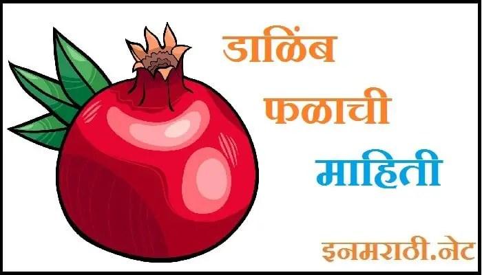 pomegranate information in marathi language
