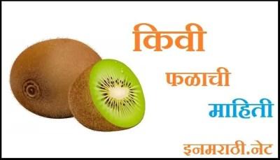 kiwi fruit information in marathi