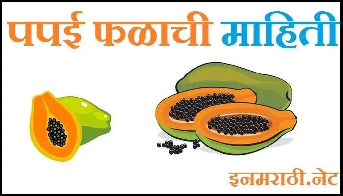 papaya fruit information in marathi
