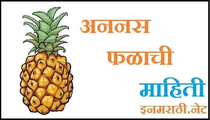 pineapple information in marathi