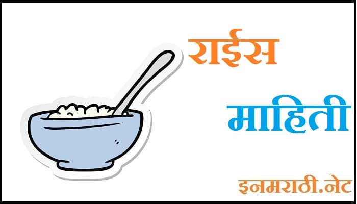Rice Information in Marathi