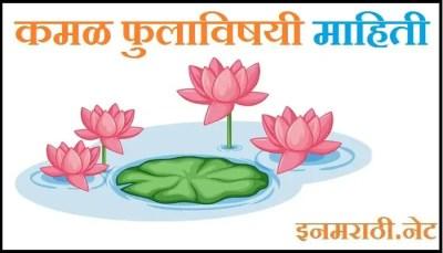 lotus information in marathi