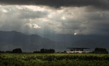 Vista de la bodega O. Fournier desde los viñedos.