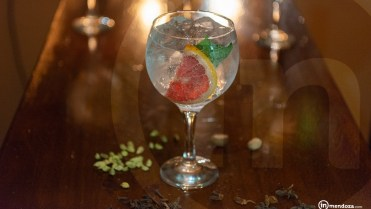 Inmendoza William Morris gin tonic