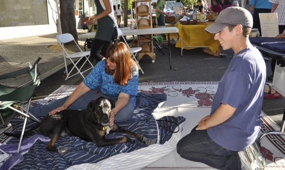 dog gets a massage a downtown Menlo Park block party