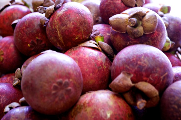 Mangosteen group shot