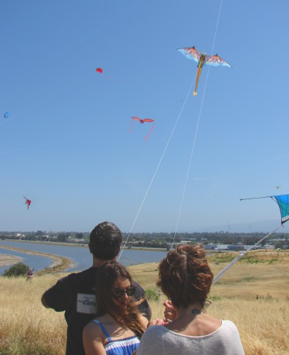 Kite day Vertical