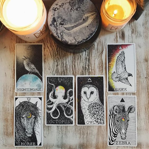 How My Tarot Cards Chose Me