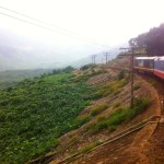 Train from Danang to Hoi An