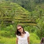 guided tour bali rice paddies 02