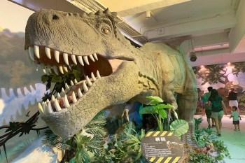 台中恐龍展(侏儸紀X恐龍樂園)好不好玩?值不值得去?,分析給你看。
