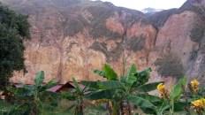 Oaza Sangalle na dnie kanionu