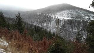 Międzygórze zimą - droga na Śnieżnik