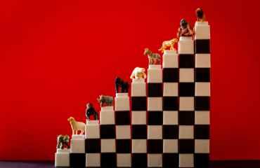 animal figurines on staircase of interlocking toy