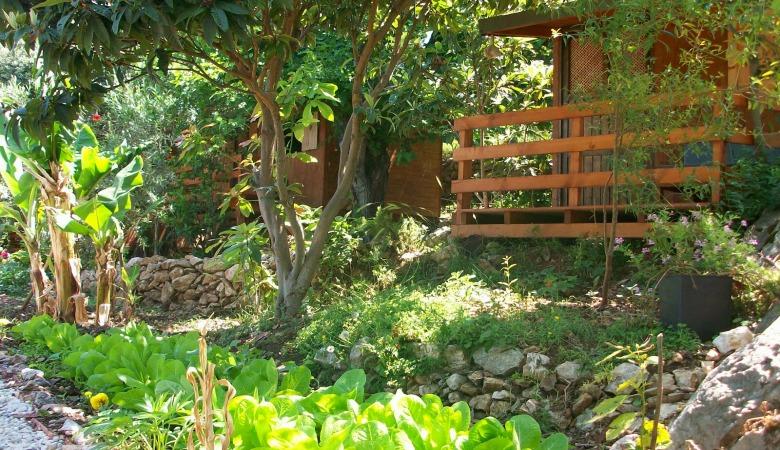 the garden780x450