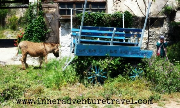 burro cart woman 500x300 tagged