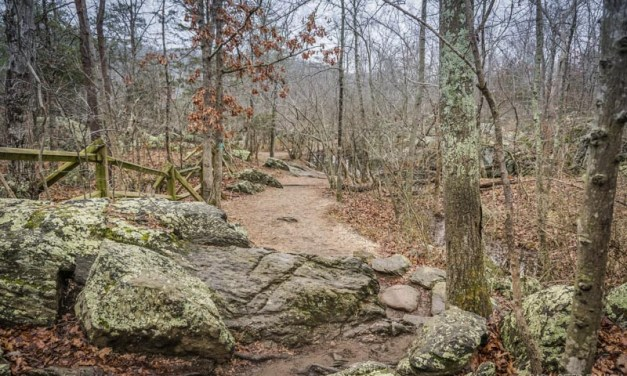 Hike 1 of 52 – River Trail Hike in Great Falls Park