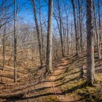 Hike 5 of 52 – Ball's Bluff Battlefield Regional Park Hiking Trails