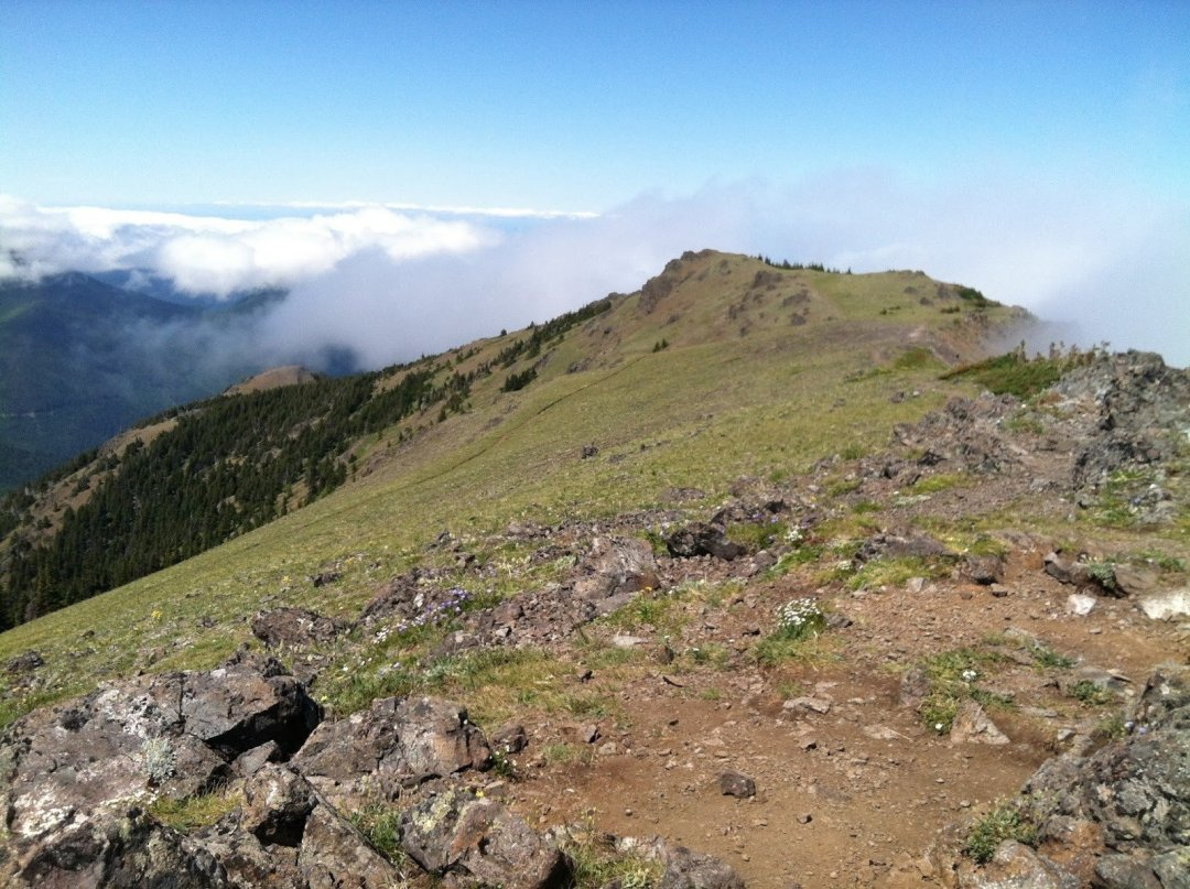 Mount Townsend Summit Ridge // Copyright Lauren Danner // Used with permission