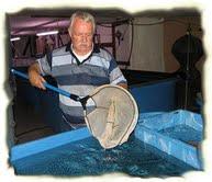 Fritz Schaer mit Netz an einem Koibecken