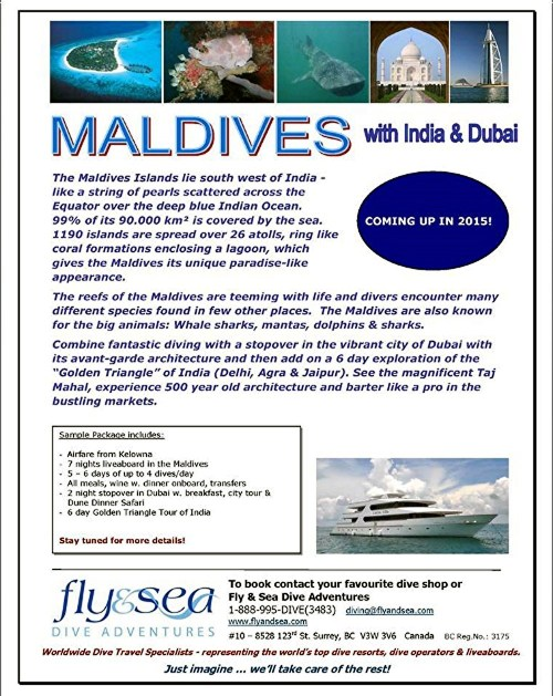 2015 Maldives Flyer