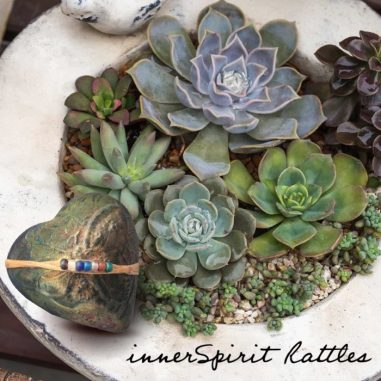 A Bowl of Succulents and a Butterfy innerSpirit Rattle