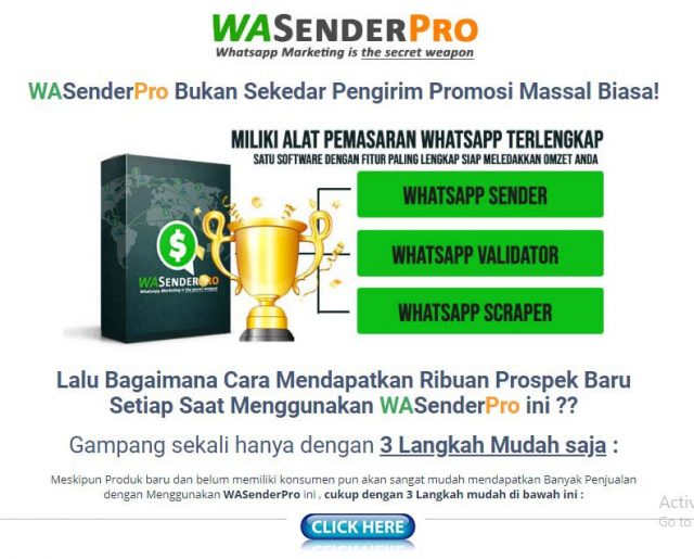 WASender Pro
