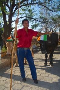 Oxen Driver 1
