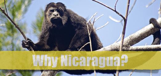 Why Nicaragua?
