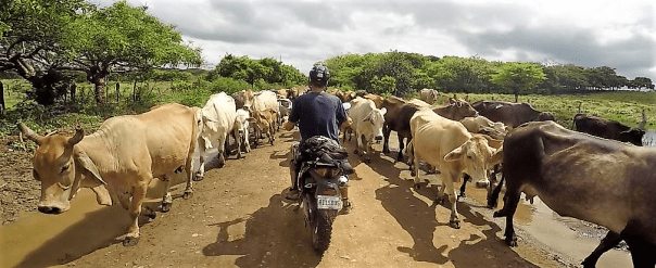 Motorcycle Nicaragua