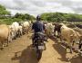 Motorcycle Diaries: San Juan del Sur to Casares, Nicaragua