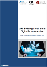 API: Building Block della Digital Transformation White Paper realizzato da NetConsulting cube