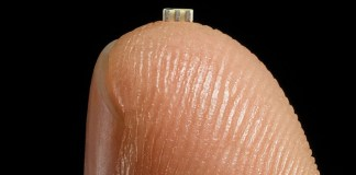 Big Hack Microchip