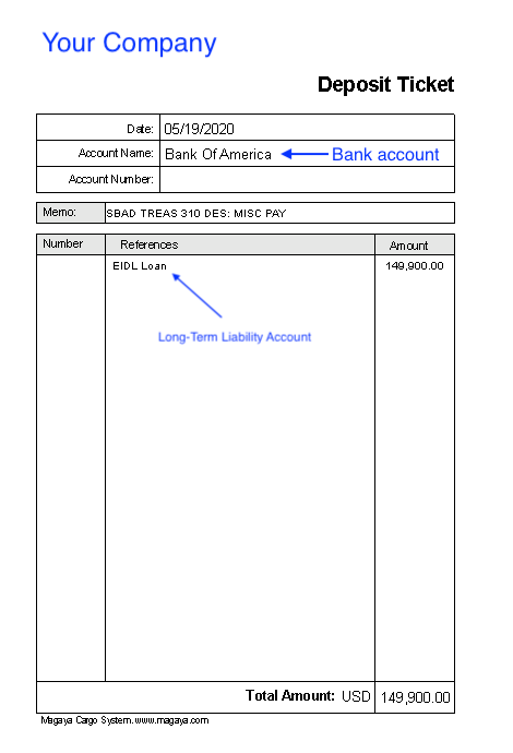 Account EIDL Loan accounting record