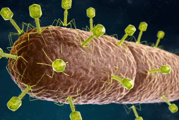 Natures own antibiotic bacteriophage virus featured image for wordpress and facebook