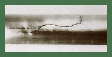 Afbeelding: spanningscorrosie in een roestvast stalenbuis.