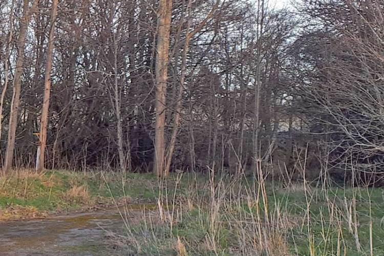 demo-site-Scotland-existing-WWTW-2