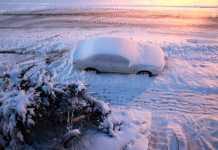 rudo invierno