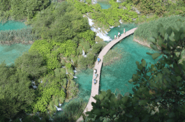 Famous view at Plitvice Lakes. Ok, it's gorgeous!
