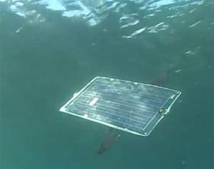 AeroVironment's Mola Robot Flies Underwater on Solar Power