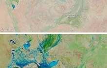Global Sea Level Rise Dampened by Australia Floods