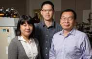 Team uses forest waste to develop cheaper, greener supercapacitors