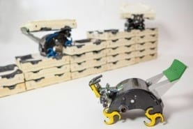 The small, autonomous robots developed by the researchers. Credit: Eliza Grinnell, Harvard SEAS